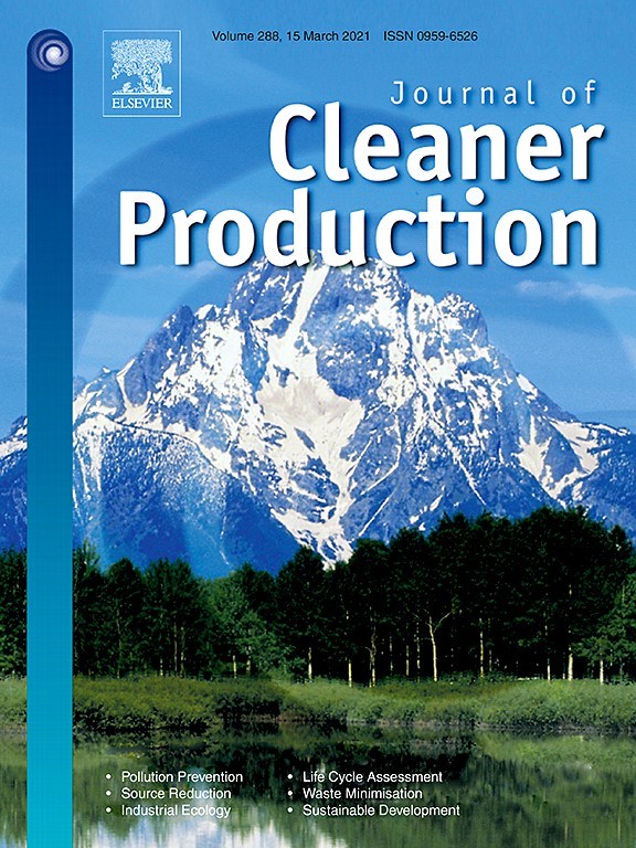 Cleaner-Production-1
